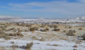 Пустыня, снег.