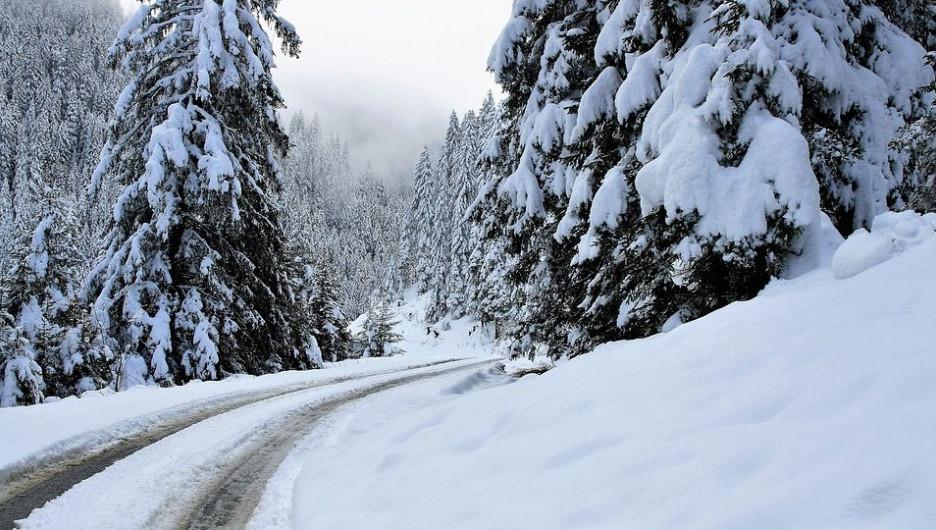 Зима. Дорога. Мороз. Лес.
