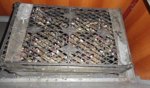 На Алтае задержали контрабандиста, который вез 68 щеглов под сиденьем автомобиля.
