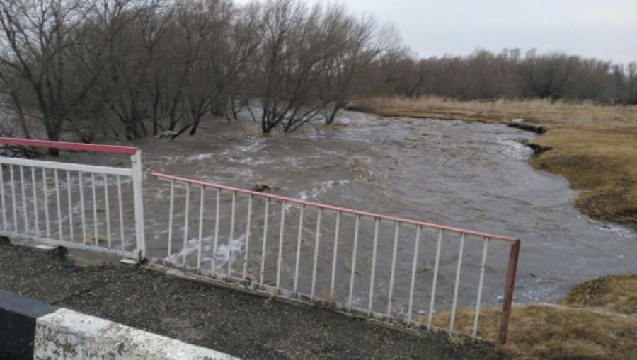 Паводок на Алтае 2018. Новокалманка.