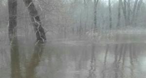 Паводок на Алтае. Третьяковский район, Староалейское 25 марта.