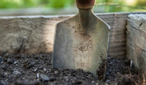Лопата. Сад. Огород. Копать.