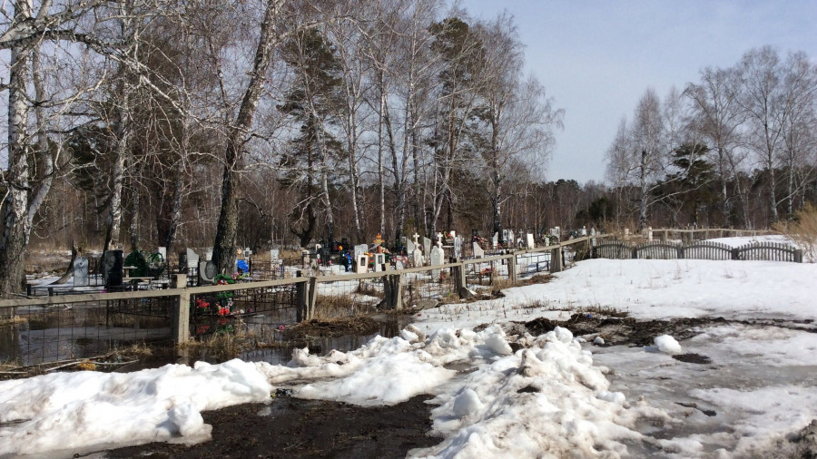 Вид на участок Игоря Губина. Черницкое кладбище.