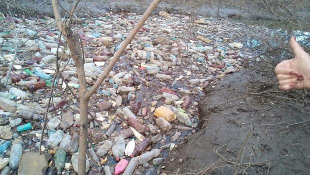 На Пивоварке вырос остров из пластиковых бутылок. Барнаул, апреля 2018 года.