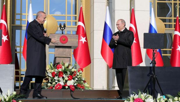 Путин и Эрдоган обсудили по телефону ситуацию в Идлибе
