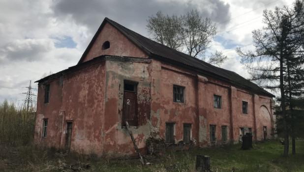 На территории бывшей спичечной фабрики (сереброплавильного завода), май 2018 года. Фото: altapress.ru.