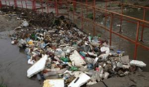 В Барнауле у моста через Пивоварку накопилась куча мусора.