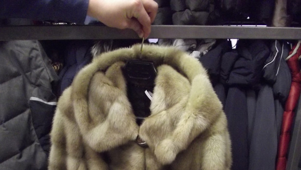 В Барнауле арестовали шубы.