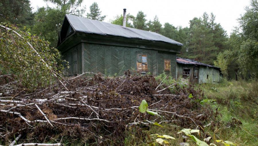 Частный дом в лесу. Деревня.