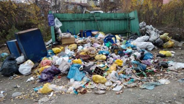 Мусорный коллапс в Горно-Алтайске.