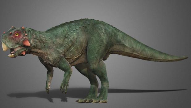 Пситтакозавр сибирский, реконструкция.