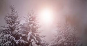 Солнце. Зима. Свет