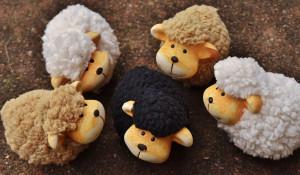 Овцы. Игрушки