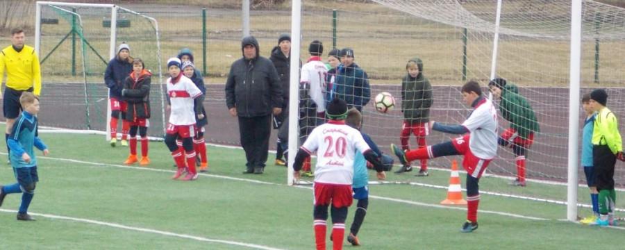 Спортивные школы Барнаула.
