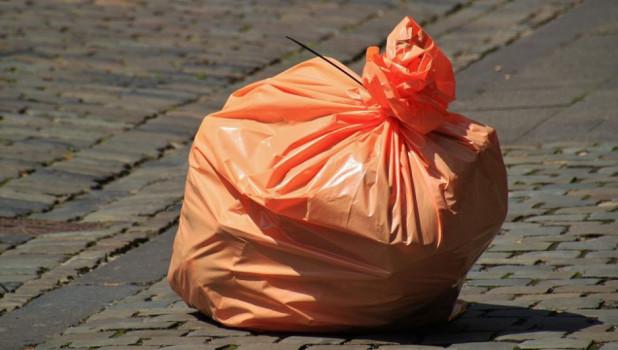 В государственной думе хотят запретить полиэтиленовые пакеты с2025 года