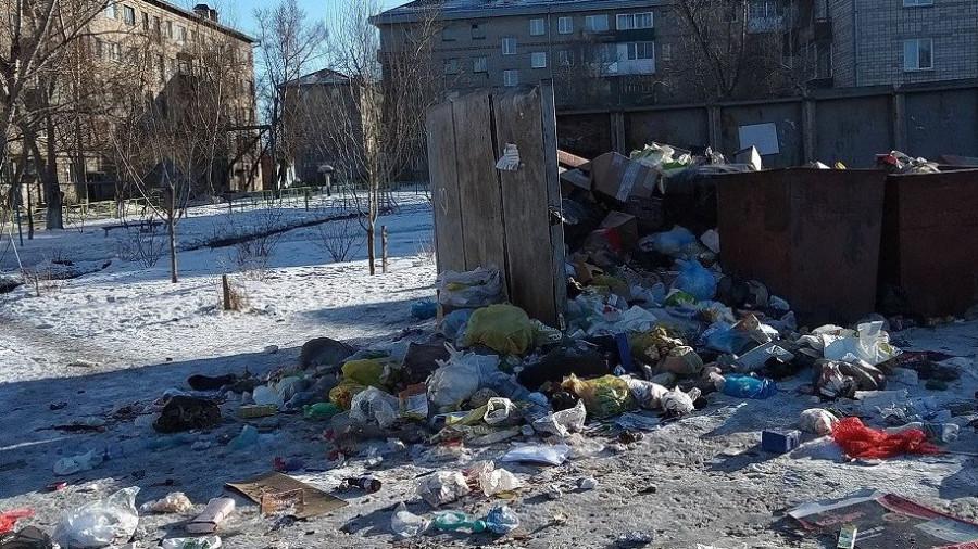 Бродячие собаки растаскивают мусор из переполненных баков в Славгороде.