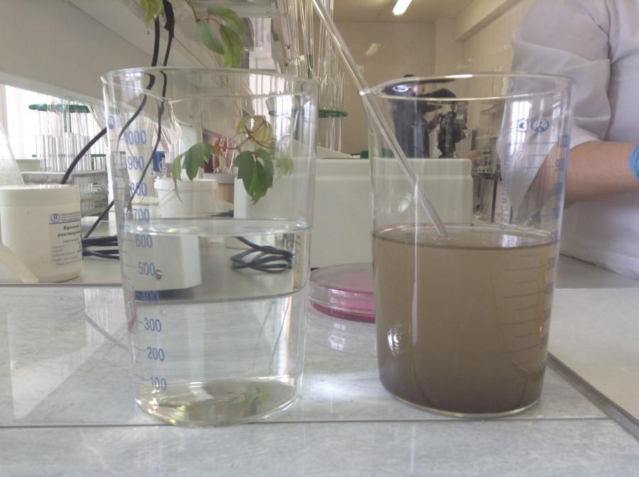 Вода после очистки и речная вода.