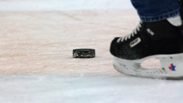 Шайба. Хоккей.