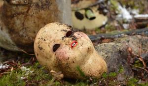 Голова куклы.
