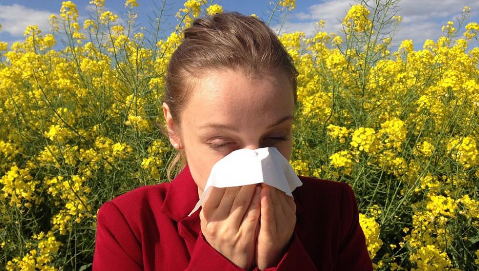 Девушка в поле. Аллергия
