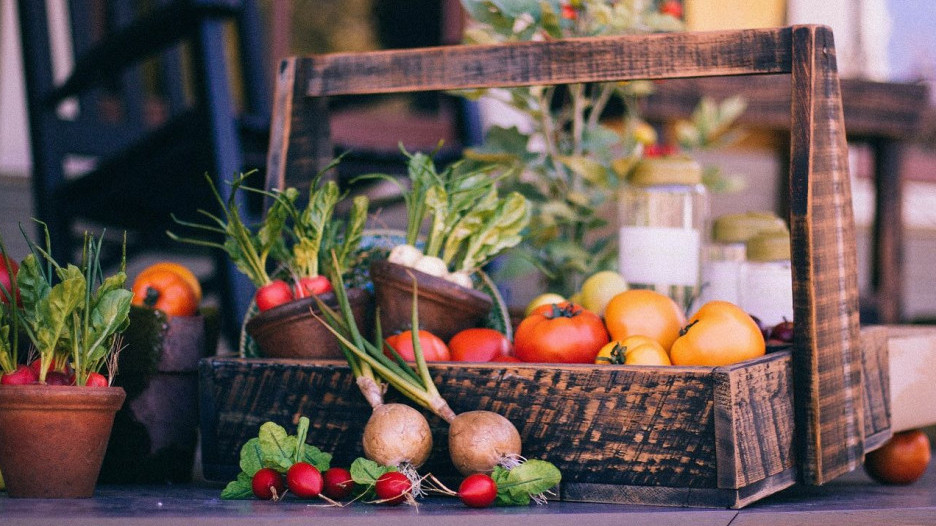 Овощи. Урожай.
