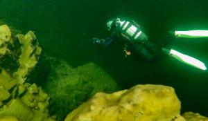 Дайверы на глубине Телецкого озера.