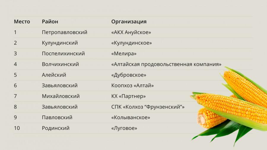 Топ-10 хозяйств Алтайского края по посевной площади в 2018 году.