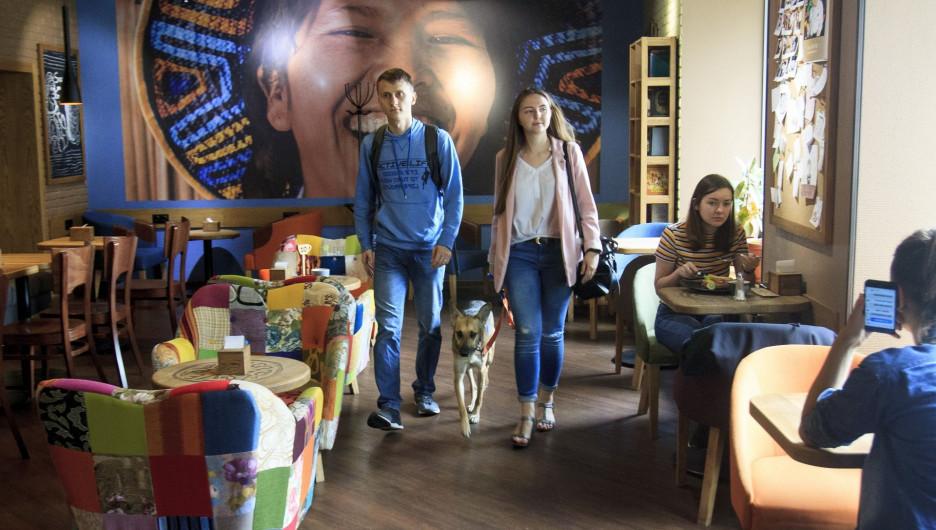 С собакой в заведениях Барнаула.