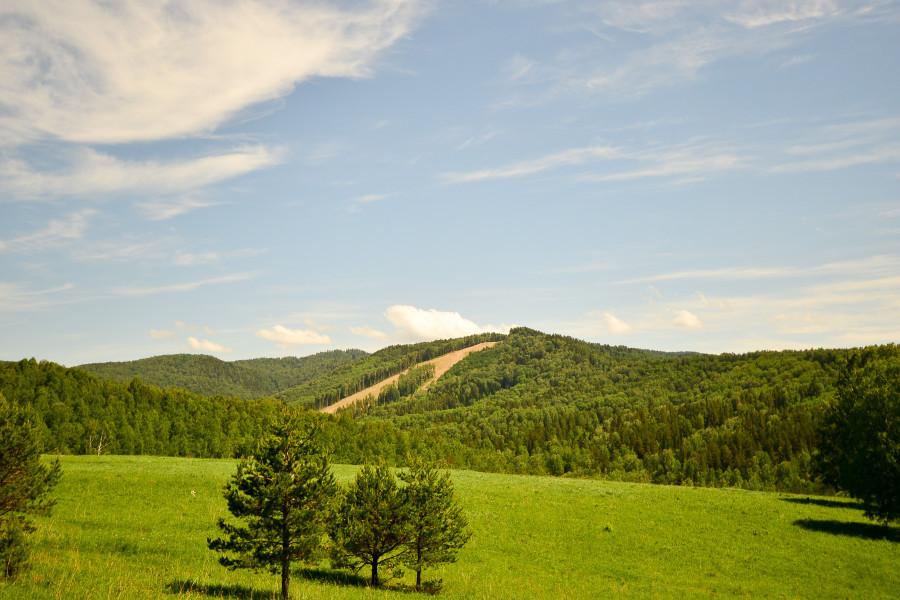 Гора Глухариная в Белокурихе.