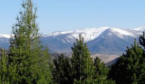 Вид на Ченитинский перевал из заказника.