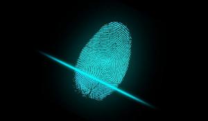 Отпечаток пальца.
