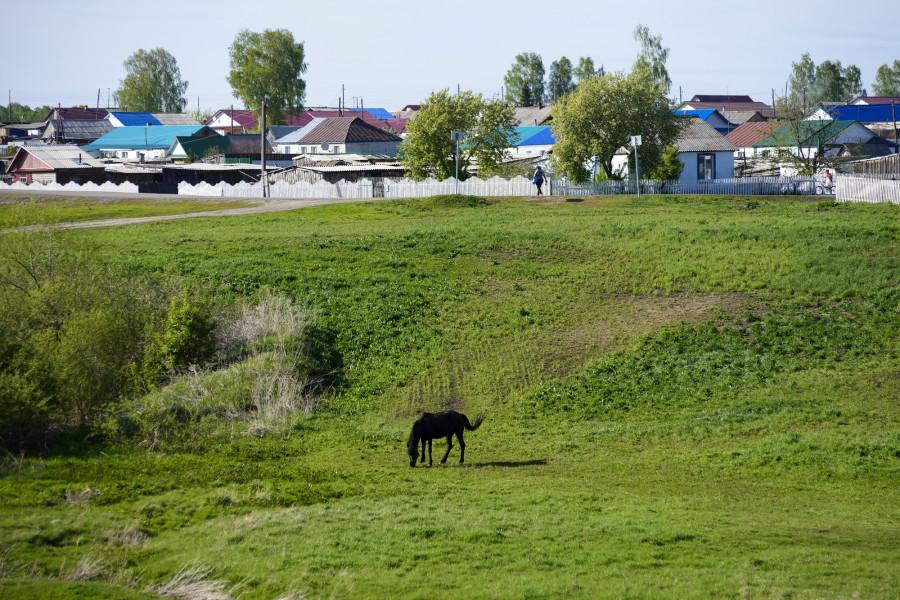 В селе Дружба Целинного района.