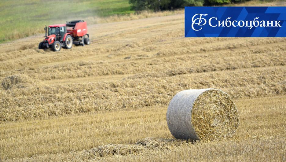 Кредиты для аграриев станут доступнее.