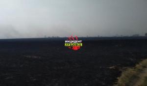 В Рубцовском районе горела сухая трава на полях.