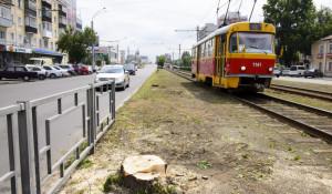 На проспекте Ленина срубили деревья.