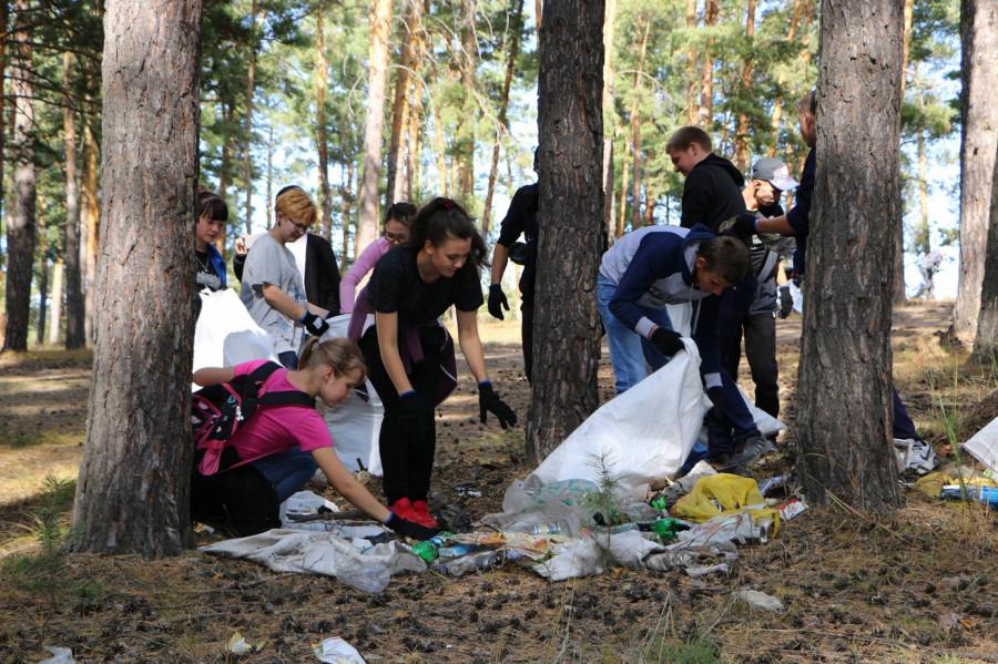 Уборка мусора в Ленточном бору