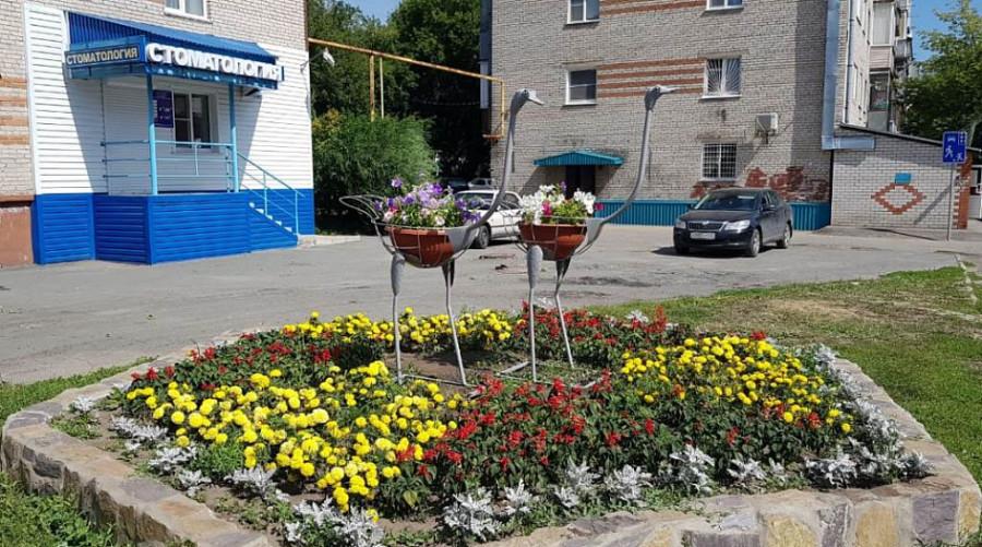 В Барнауле на клумбе поставили металлических страусов.