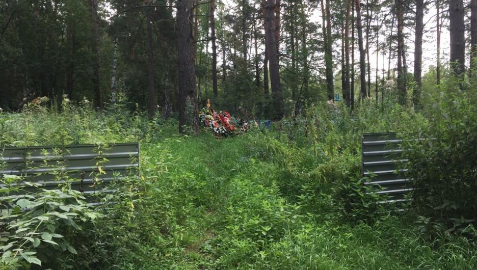 Кладбище. Деревня Покровка Первомайского района Алтайского края.