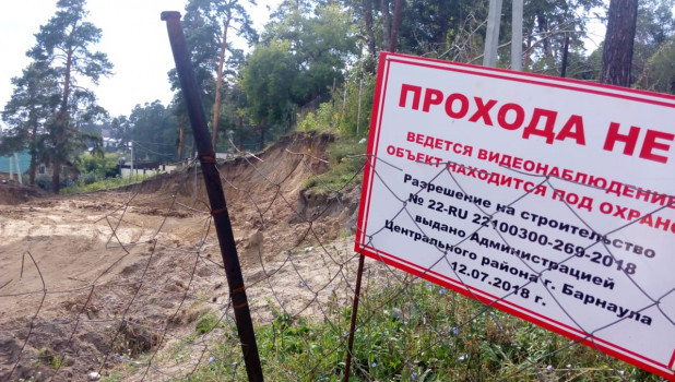Барнаульцы пожаловались на вырубки в поселке Ерестной.