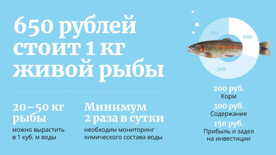 Разведение рыбы.