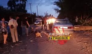 """Ветер обрушил дерево, которое """"устроило"""" ДТП на дороге в Рубцовске. 31 августа 2019 года."""