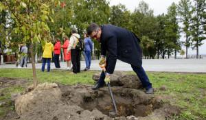Депутаты БГД высаживают яблони в Нагорном парке.