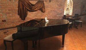 Коттедж с музыкальной комнатой.