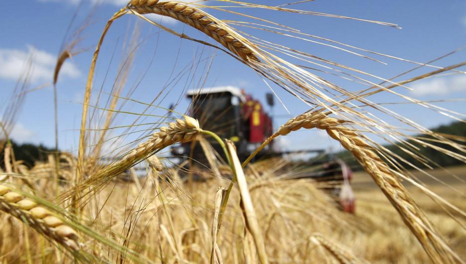 В Барнауле состоится выездное совещание «Цифровизация сельского хозяйства».