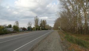 Автодорога Бийск - Мартыново - Ельцовка - граница Кемеровской области