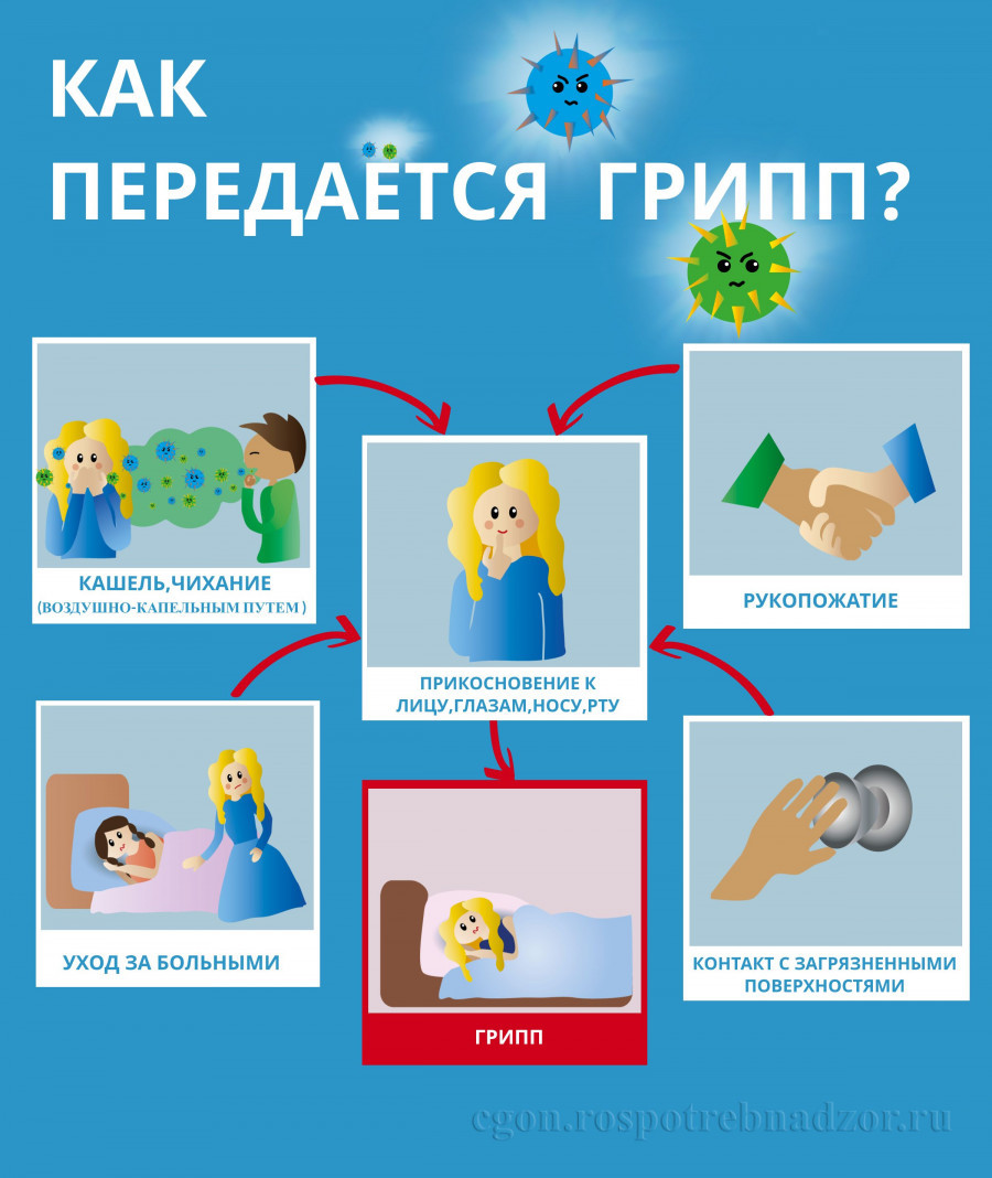 Как передается грипп: памятка