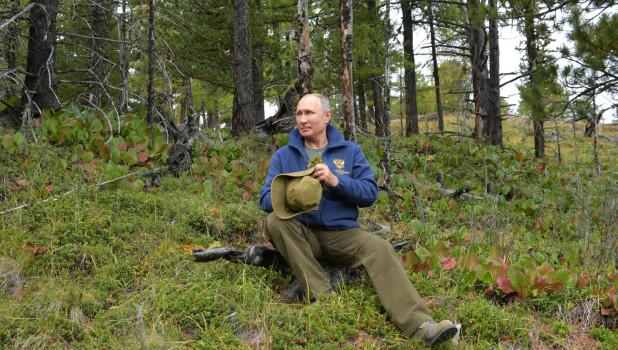 Таежные каникулы Путина, 2019.