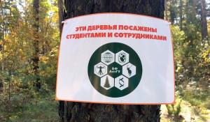 Студенты-биологи АлтГУ приняли участие в посадке молодых деревьев.