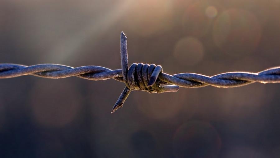 Тюрьма, колючая проволока