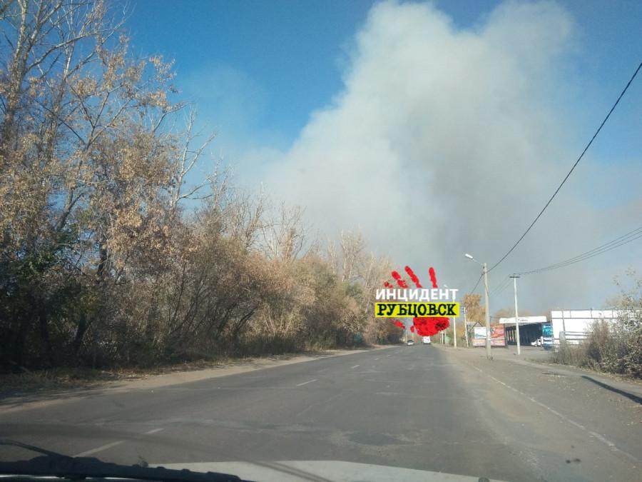 В Рубцовске горят поля.